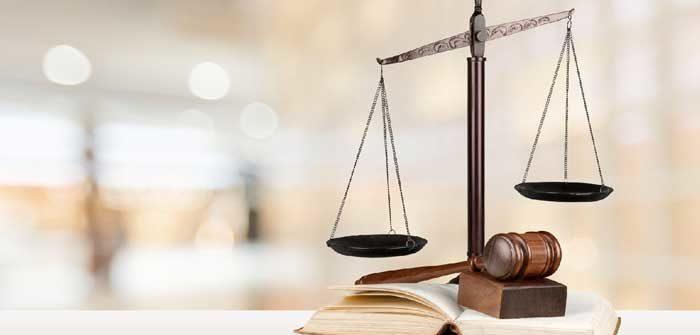 statut juridique création de société